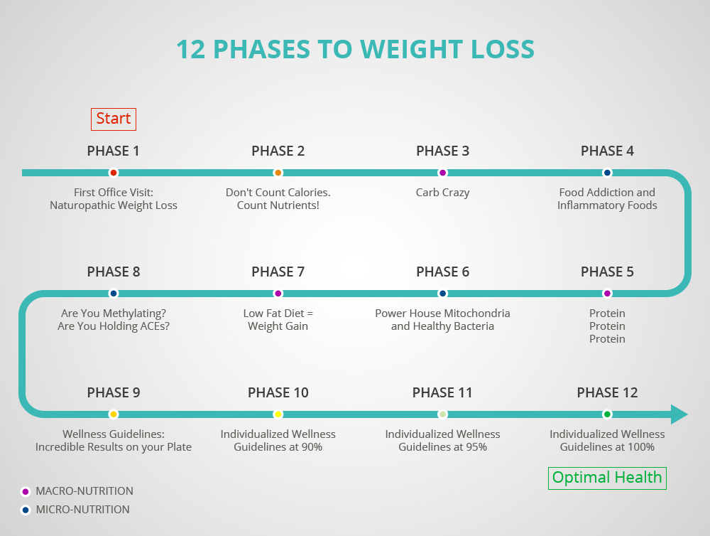 Dr. Kneessi's 12 Phase Weight Loss Program