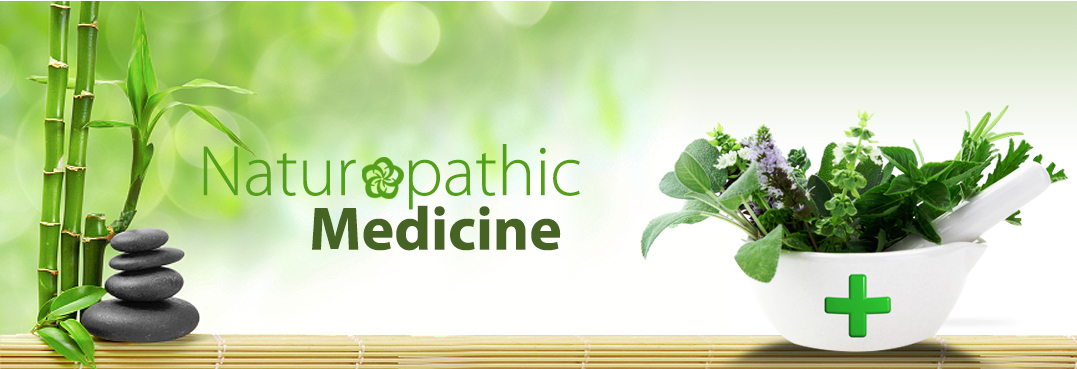 Image result for the naturopathic doctor
